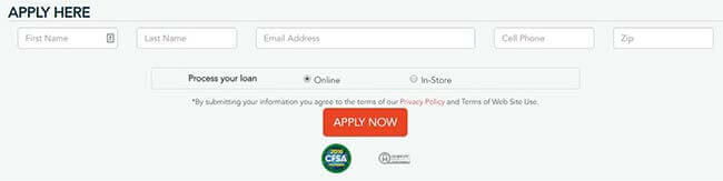 Check Into Cash - Application form